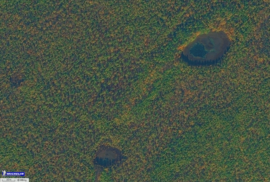 Curious clearing inthe Siberian forest, with wet spots