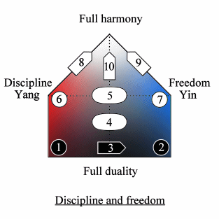 Quadripolar Diagram of discipline and freedom